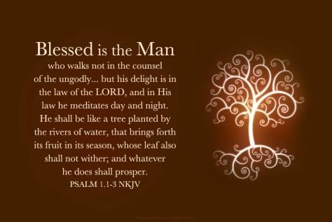 Follow good counsel!