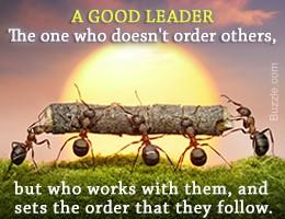 good leader ants